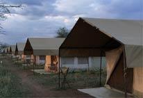 Foto del Hotel SH Campamento Movil del viaje safari serengeti