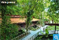 Foto del Hotel hotel evergrenn tortuguero del viaje bosque lluvioso