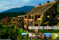 norongoro-serena-hotel-little