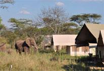 Foto del Hotel karatu tend del viaje safari tarangire