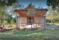 Foto del Hotel said mara del viaje gran safari kenia