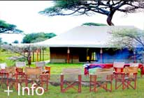 Foto del Hotel serengeti tend camp del viaje safari gran clase