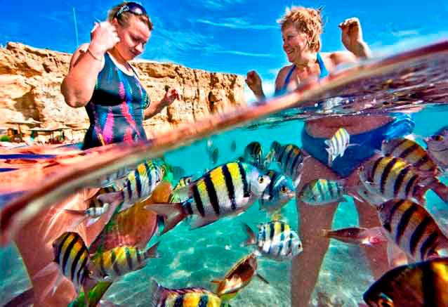 Foto del Viaje nadar-en-las-playas-de-Sharm-el-Sheik.jpg