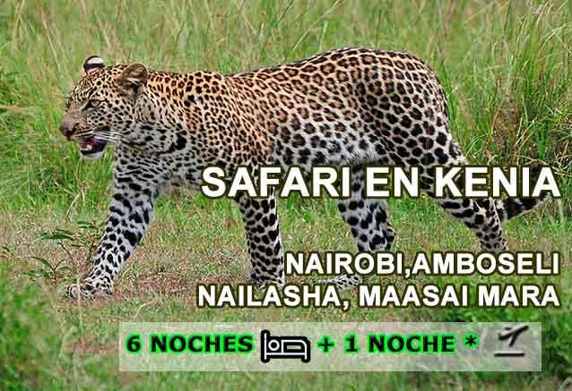 Foto del Viaje safari-en-Kenia-foto-maasai-mara-bidtravel-portada.jpg