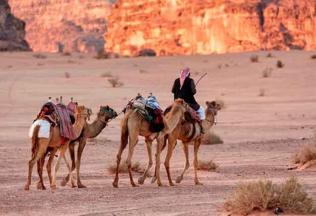 Foto del Viaje jordania-desierto-wadi-rum-camellos.jpg