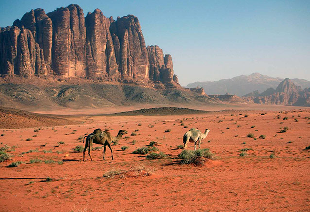 Viaje jordania jerusalen wadi rum