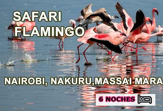 Foto del Viaje Flamencos-Kenia-Safari-Flamingo.jpg