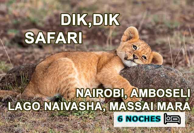 Foto del Viaje Leon-Massai-Mara-dik-dik-safari-viajes-bidtravel.jpg