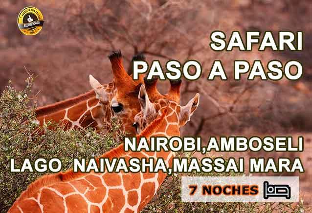 Foto del Viaje Jirafas-Kenia-Safari-paso-a-paso-viajes-bidtravel.jpg
