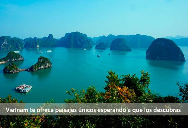 Foto del viaje ofertas vietnam esencial halongbayvietnam