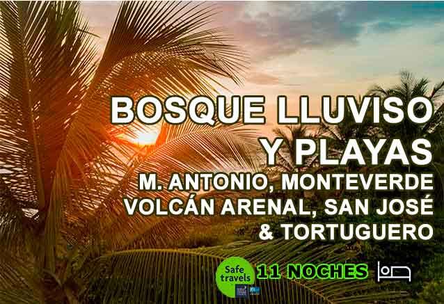 Foto del Viaje BANNER-BOSQUE-LLUVIOSO.jpg