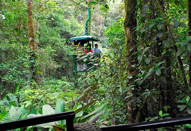 Foto del viaje ofertas explosion tropical Parque Nacional Braulio Carrillo