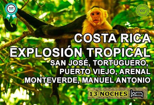 Foto del Viaje mono-cabeza-blanca-costa-rica.jpg