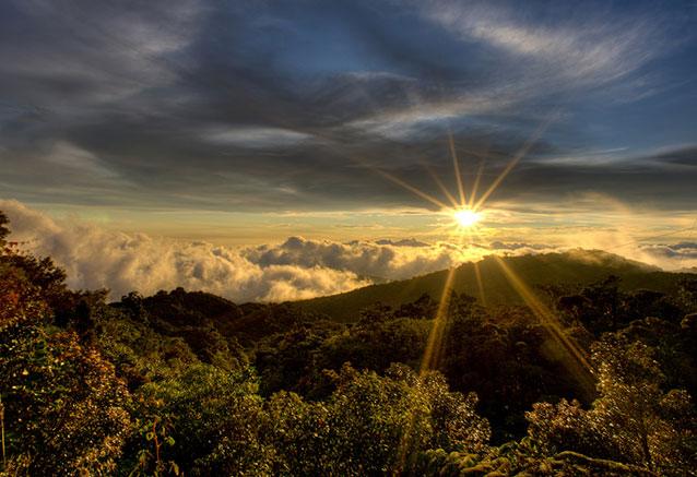 Viaje paraiso exotico Cerro Amigos Costa Rica