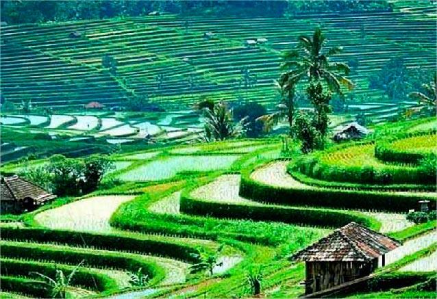 Viaje maravillas birmania birmania12