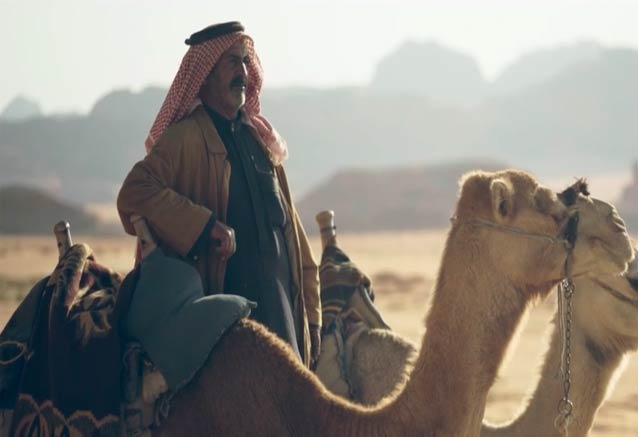 Viaje tesoros hachemitas camellos jordania