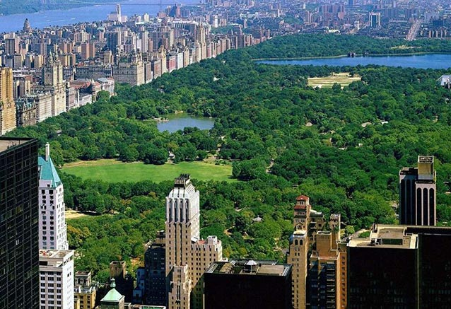 Viaje nueva york compras mas central park