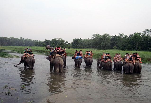 Foto del viaje ofertas lo mejor tailandia Safari