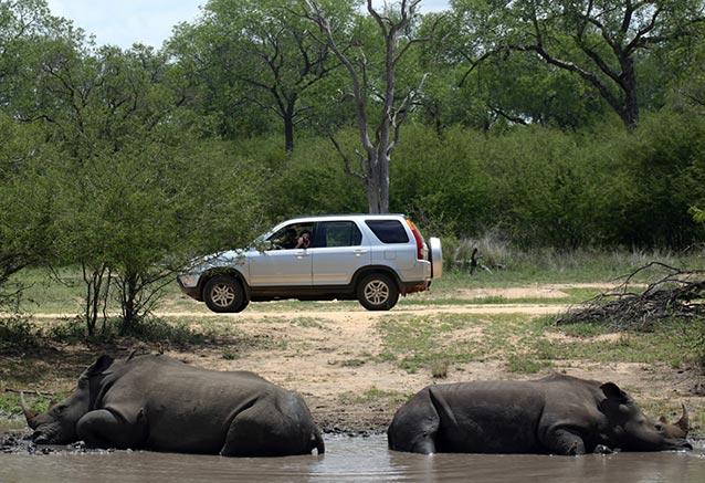 Foto del viaje ofertas kenia samburu massai 7 dias KrugerNP Kenia Samburu
