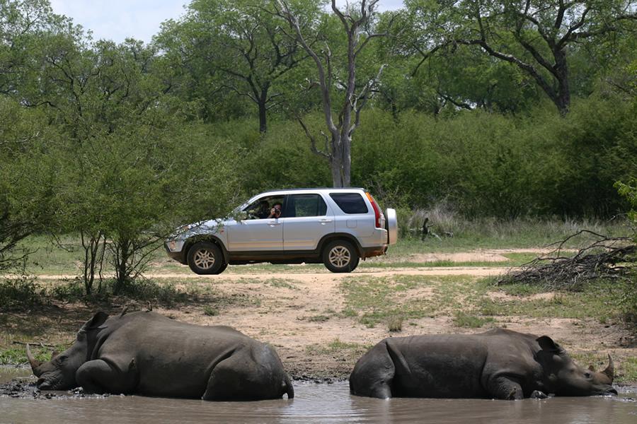 Viaje kenia samburu massai 7 dias KrugerNP zps083db30d