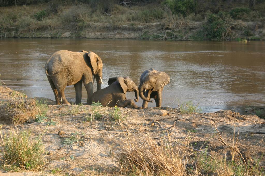 Viaje suspiros keniatas 13 dias Picture072 zpsbdcbb912