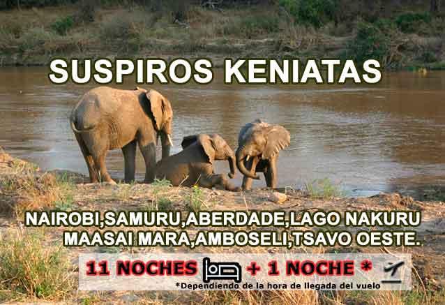 Foto del Viaje Suspiros-keniata-foto-elefantes-portada-bidtravel.jpg