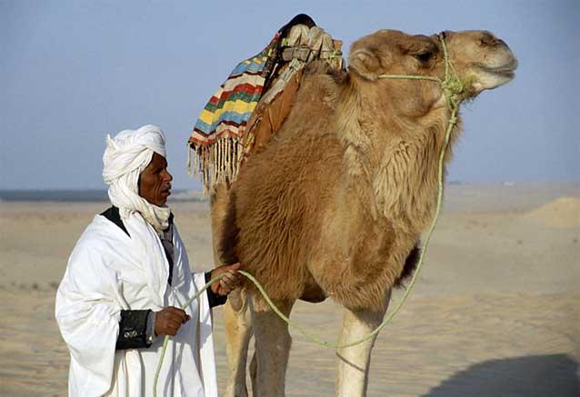 Viaje guerra galaxias tunez tunez camello