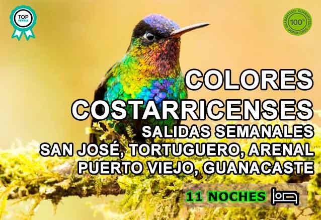 Foto del Viaje pajaro-multicolor-colores-costarricenses.jpg