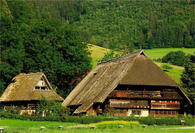 Viaje alemania selva negra 8 dias alemania 1