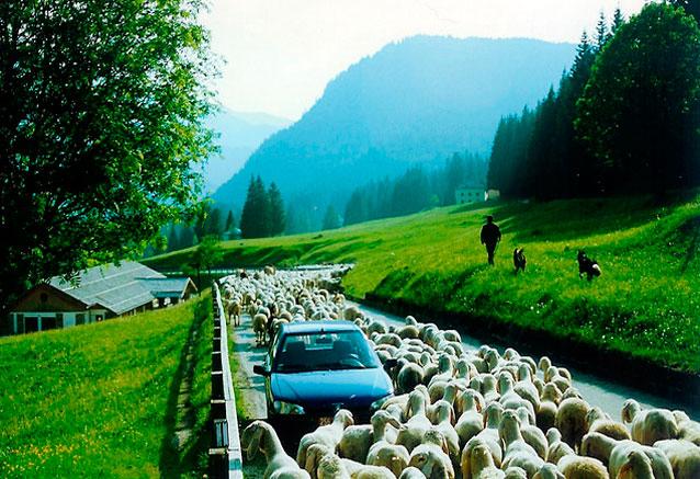 Viaje viaje dolomitas tirol italiano bolzano italia