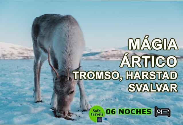 Foto del Viaje magia-del-artico-en-tromso.jpg