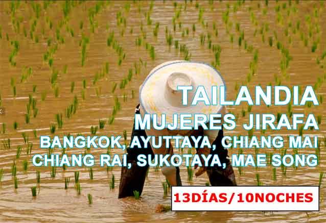 Foto del viaje ofertas tailandia mujeres jirafa MUYERES JIRAFONES