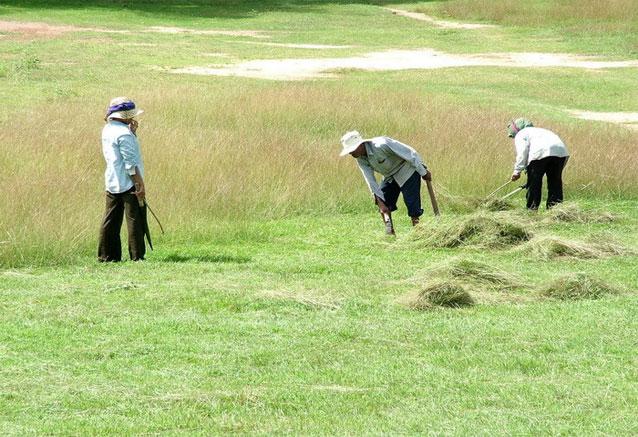 Foto del Viaje camboya-12.jpg