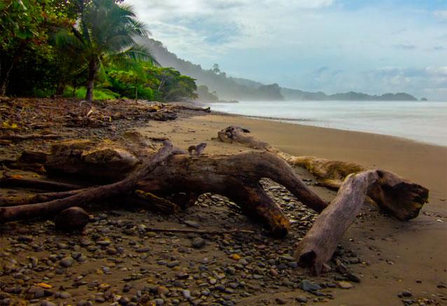 Viaje aventuraleza costa rica costa rica playa virgen