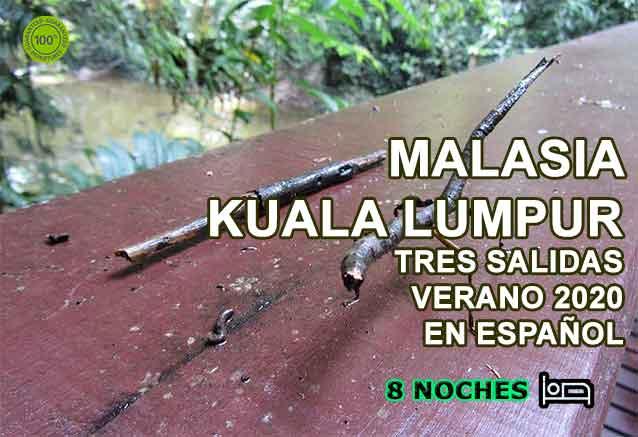 Foto del Viaje MALASIA-VIAJE-BY-BIDTRA-VEL.jpg
