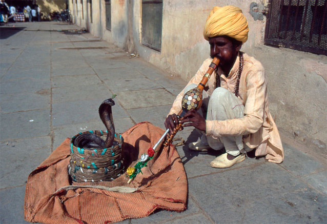 Viaje cheap india khajuraho benares jaipur encantador de serpientes