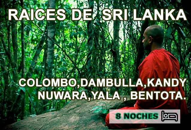 Foto del Viaje raices-de-sri-lanka-meditacion.jpg