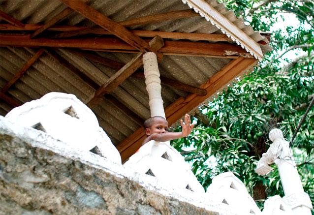 Foto del viaje ofertas sri lanka isla del paraiso sri lanka boy