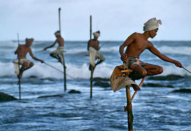 Viaje perla del indico playa SRILANKA