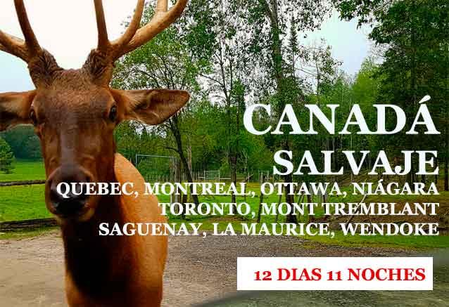 Foto del viaje ofertas canada salvaje SALVAJE CANADA