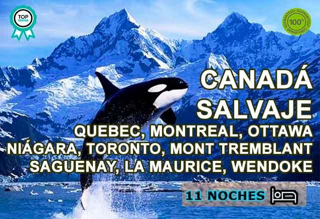 Foto del Viaje avistamiento-de-ballenas-quebec.jpg