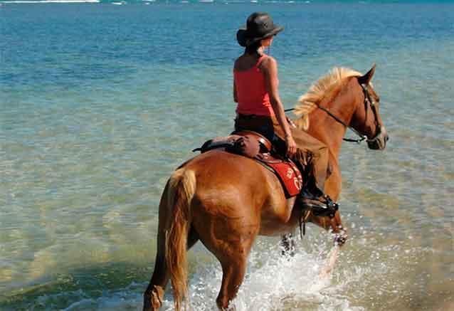 Viaje brasil cataratas iguazu playas brasil caballos