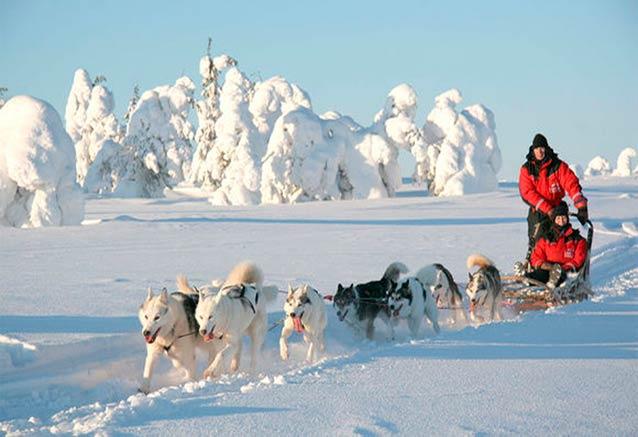 Viaje aventura artico aventura polar huskie escandinavia