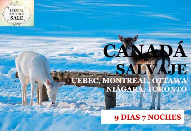 Foto del Viaje CANADA-INVERNAL.jpg