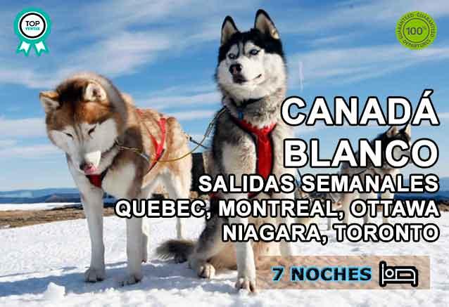 Foto del Viaje huskies-en-la-nieve-canada-salvaje.jpg