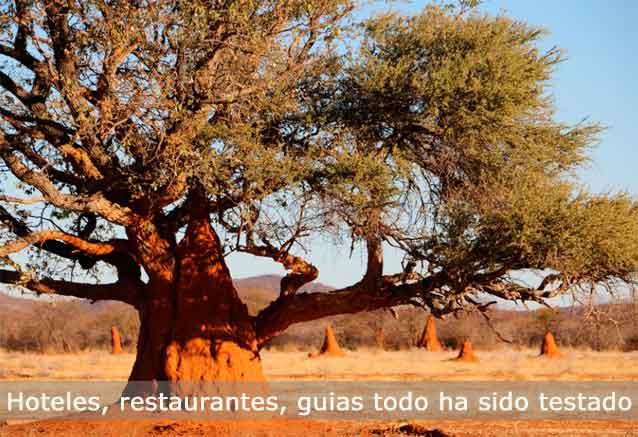 Viaje lo mejor namibia namibia testado
