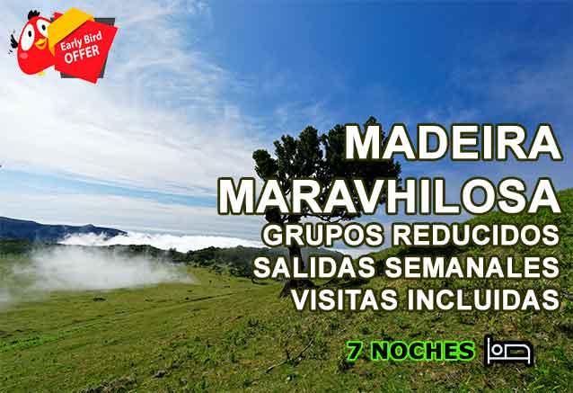 Foto del Viaje MADEIRA-OFERTA-COMPRA-ANTICPADA.jpg