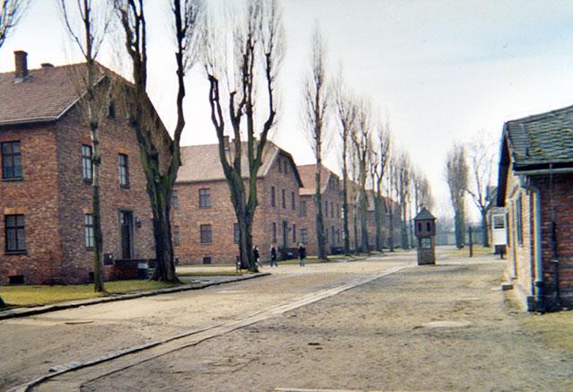 Foto del viaje ofertas mazurka polaca Auschwitz 1
