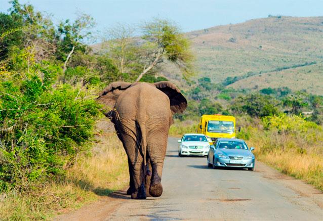 Viaje sudafrica cataratas victoria sudafrica bidtravel