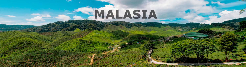 Viaje organizado a Malasia